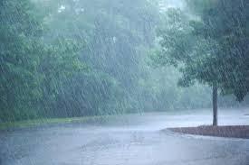 Heavy Rain Crack Pc Free Download Torrent Skidrow